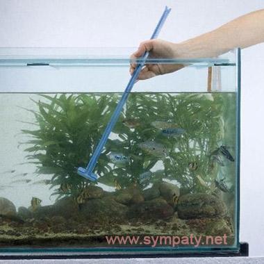 Как ухаживать за аквариумом уборка налета