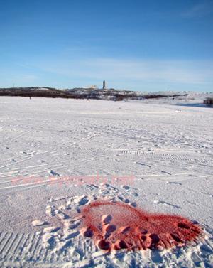 сердечко на снегу из краски