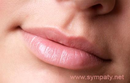 Как выбрать бальзам для губ