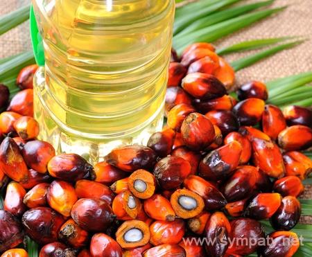 пальмовое масло вредно
