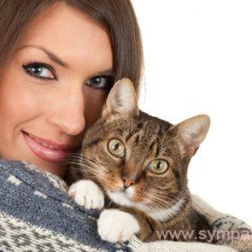кошки не вызывающие аллергию