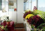 зимний сад на балконе в квартире