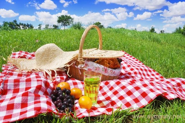 что можно взять на пикник с друзьями