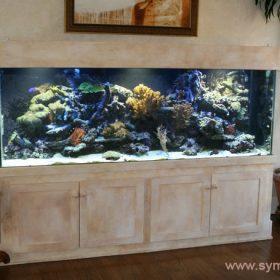 Для большого свободного пространства подойдет большой панорамный аквариум