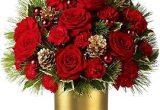 цветы новый год