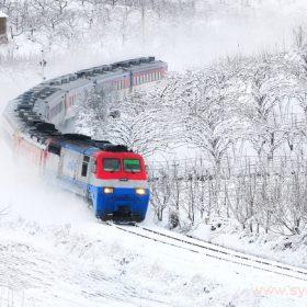 Если боитесь замерзнуть ночью в поезде, возьмите с собой спальный мешок