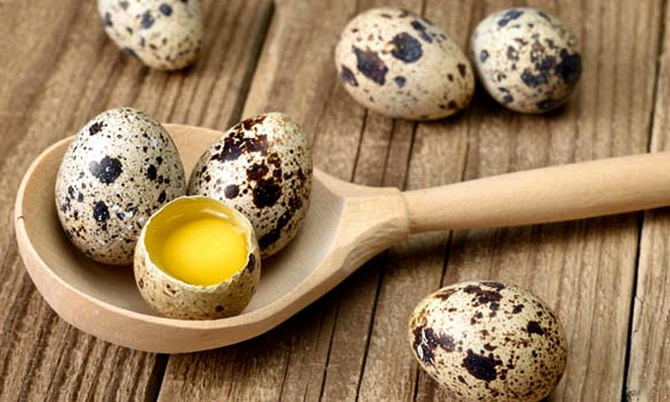 Перепелиные яйца вареные польза и вред