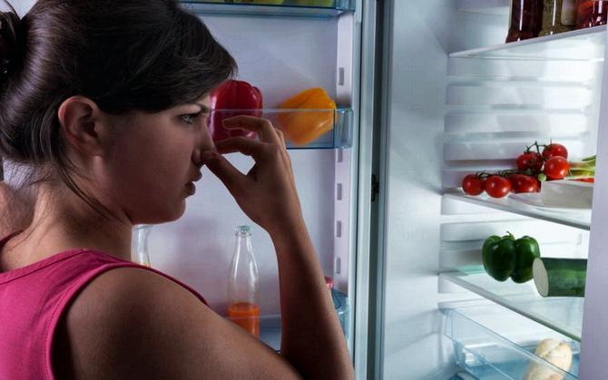 Плесень в холодильнике – как избавиться быстро причины